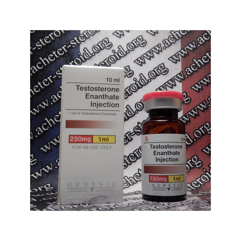 Testosterone Enanthate Genesis Buy Testosterone