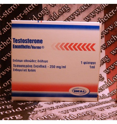 proviron dosage off cycle